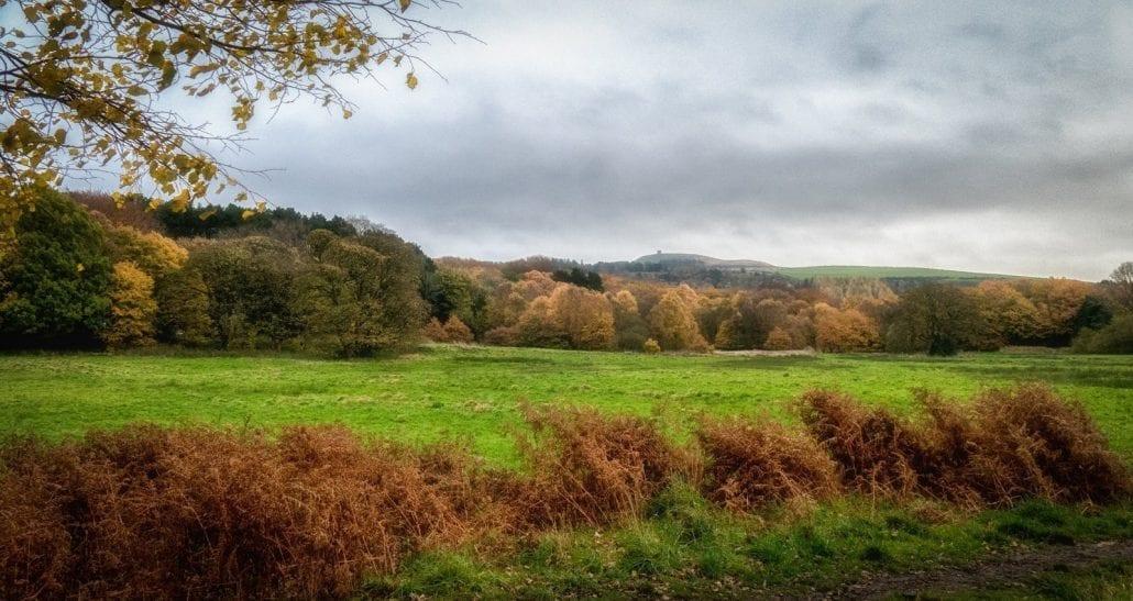 Rivington Pike In Autumn