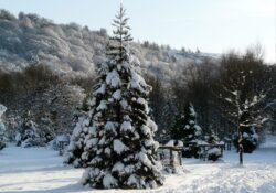 Rivington Winter, Memorial Gardens