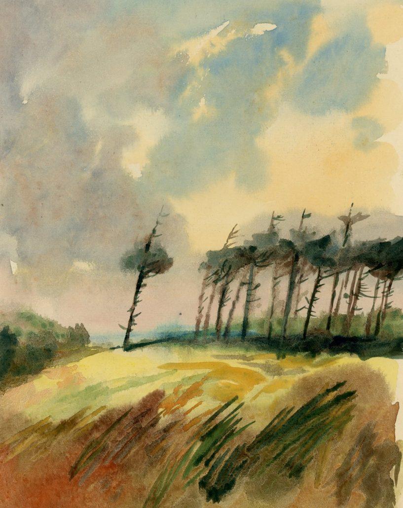 Wind Swept by Colin Callon