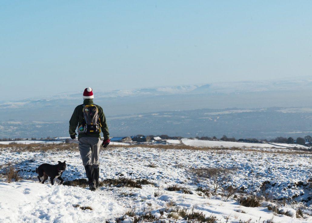 Walking The Dog Winter Hill Winter Walking The Dog Winter Hill Winter