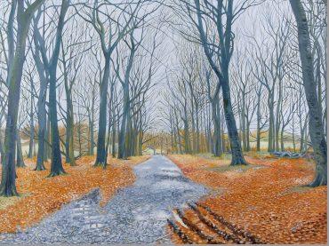 'Shawes Drive, Autumn' by Neil Baglow