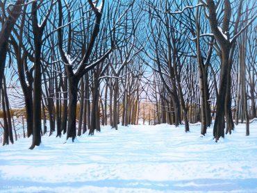 'Shawes Drive, Winter' by Neil Baglow