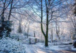 The Path to Rivington Pike by David Ruaux