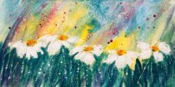 'Daisy,Daisy' by Rosie Rimmer