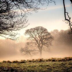 'Winter Morning, Rivington' by David Ruaux
