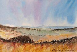 'Smithills Moor' by Rosie Rimmer