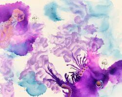 'Webcap Coral' by Kylie Dixon