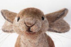 'Harriet Hare' by Jane Franklin - detail