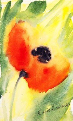 'Poppy' Fine Art Prints by Rosie Rimmer