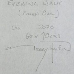 'Evening Walk, Barn Owl' by Gerry Halpin' by Gerry Halpin