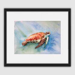 'Sea Turtle' by Helen Worthington