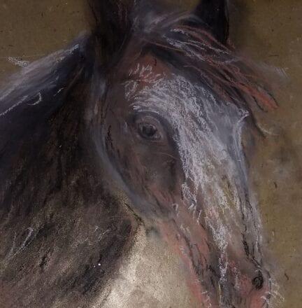 'Arnie the Horse' by Suzi Stephens