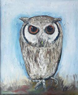 'Cute Owl' by Pam Wakefield