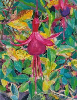'Fuchsia' by Suzi Stephens
