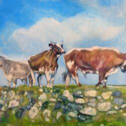 'Longhorns at Carnyorth' by Suzi Stephens