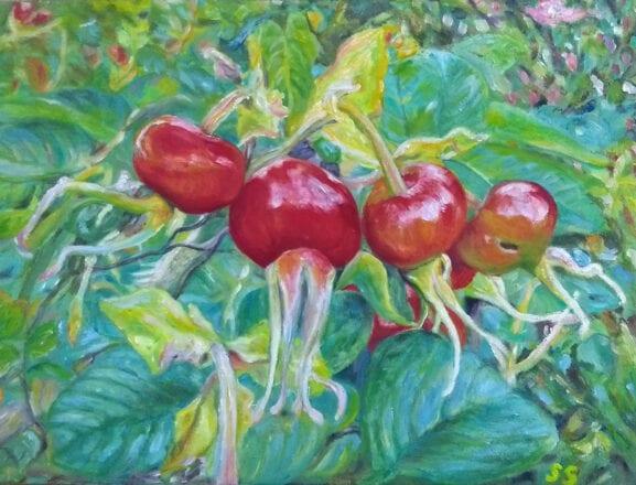 'Rosehips' by Suzi Stephens