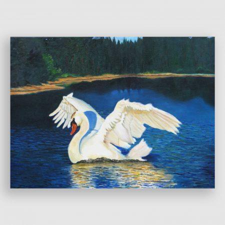 'The Swan' by Chris Rowe