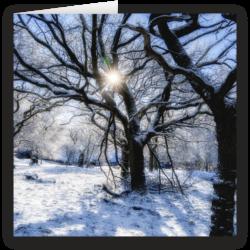 A Sunny Winters Day, Rivington. Fine art Christmas card by David Ruaux