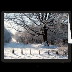 Towards Gilsbrook, Rivington. Christmas Card by David Ruaux